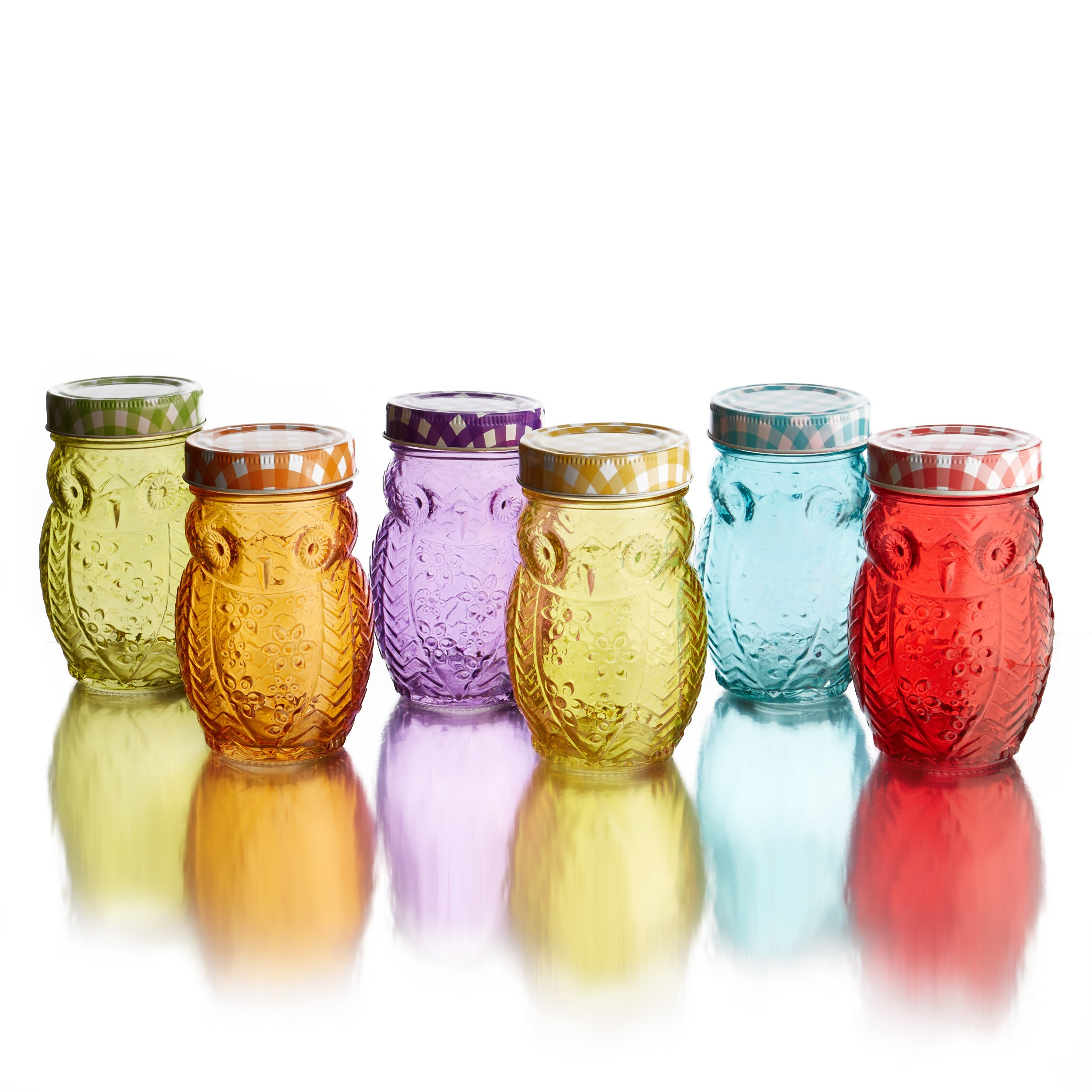 Style Setter Owl Colors Set of 6 Jars with Lids